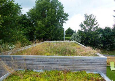 Dachgarten-(1)