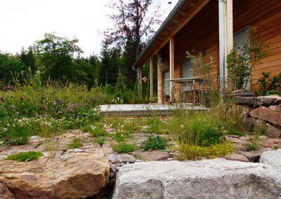 Naturnaher-GartenII-(3)