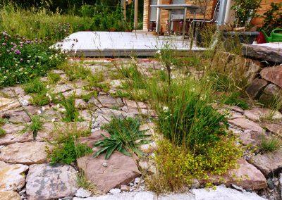 Naturnaher-GartenII-(4)